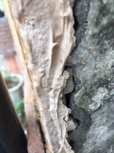 福岡県 福岡市 外壁塗装 屋根塗装 塗装専門店 スターペイント 雨漏り 防水工事 ショールーム
